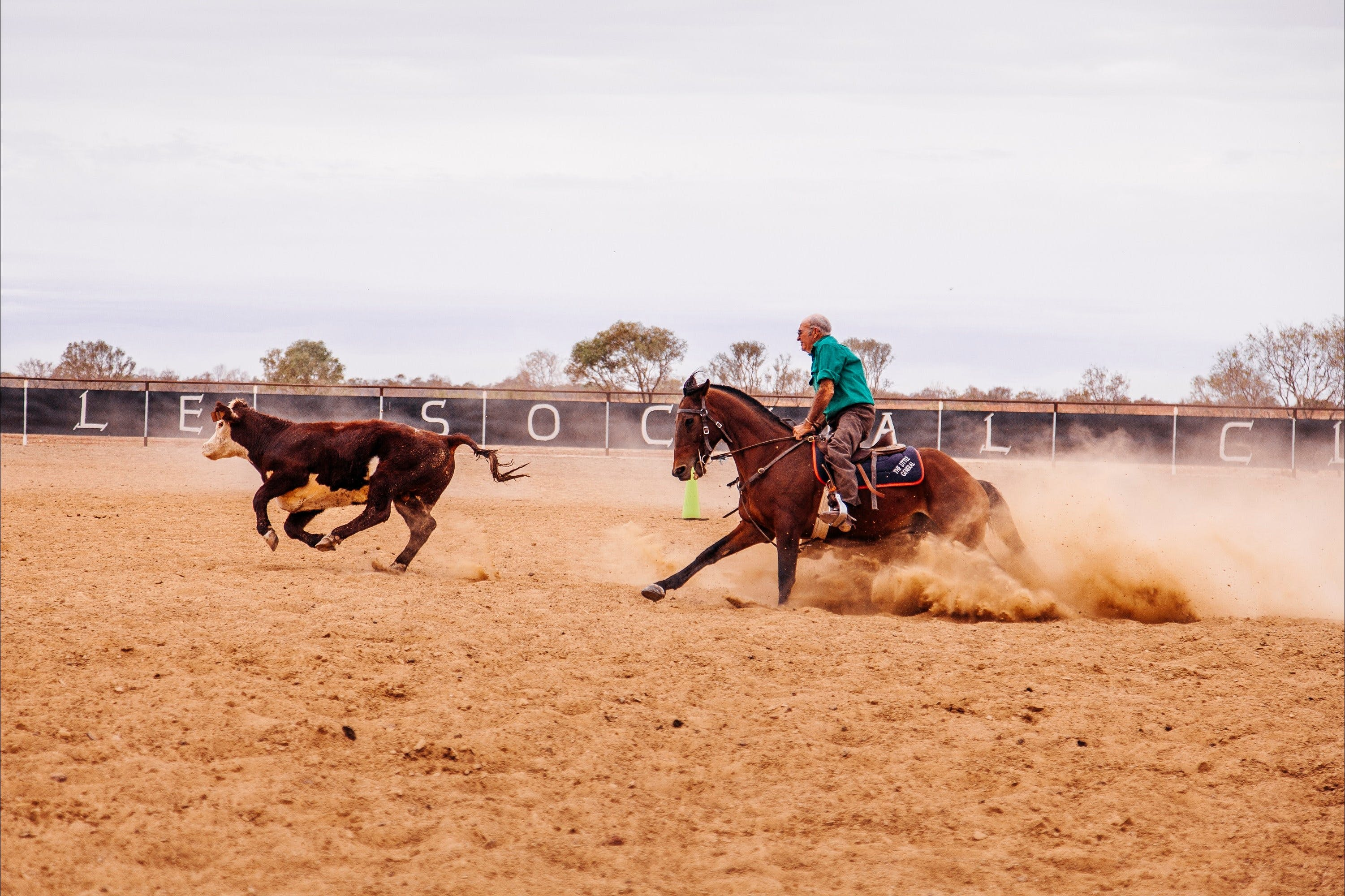 Birdsville Campdraft  Rodeo and Bronco Branding - QLD Tourism