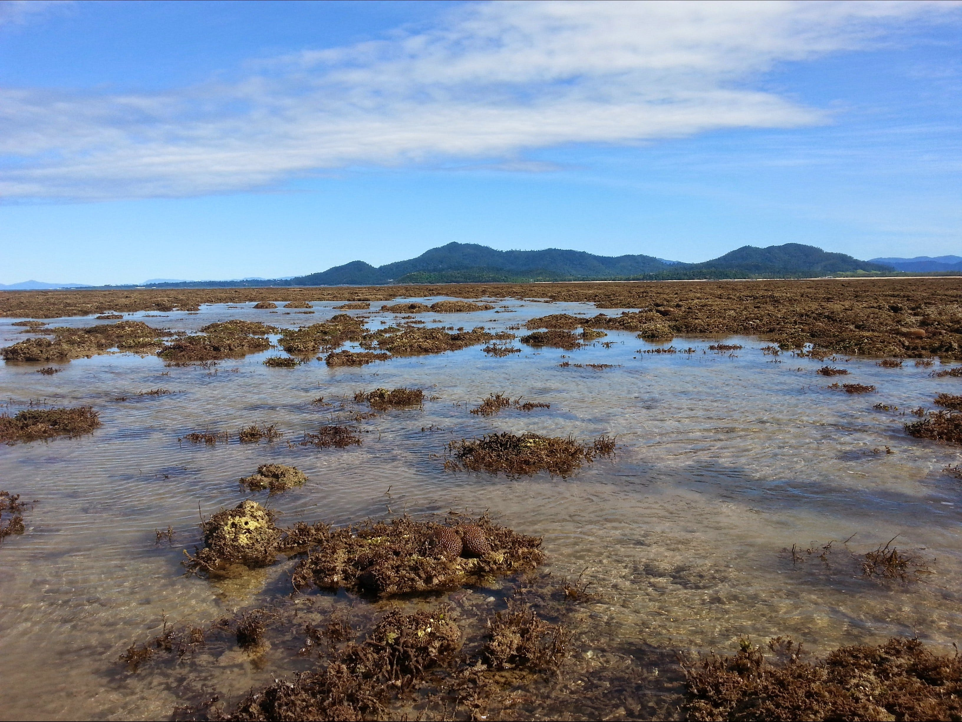 Walk to the Reef - QLD Tourism