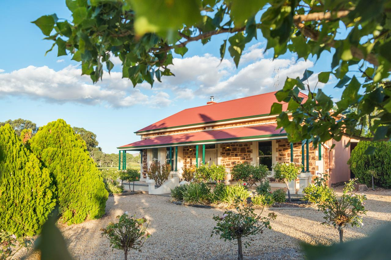 Barossa Shiraz Estate - QLD Tourism