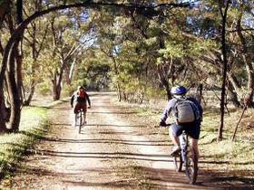 Bike About Mountain Bike Tours And Hire - QLD Tourism
